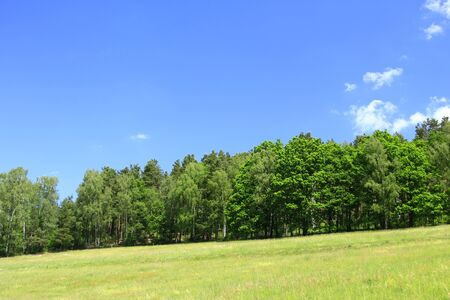 saxony: Natural landscape in Saxony, with blue sky, forest and meadow