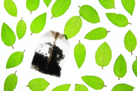 fresh picked peppermint leaves with a tea bag Stock Photo - 14045241