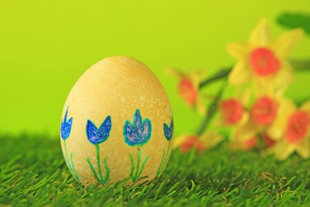 Easter decoration from single, brightly painted, Easter egg in green artificial turf before blurred daffodils Stock Photo - 14163376