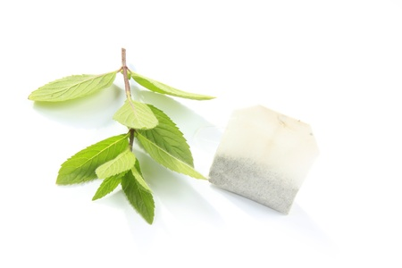 Peppermint tea, little fresh twig with tea-bag Stock Photo - 14703022