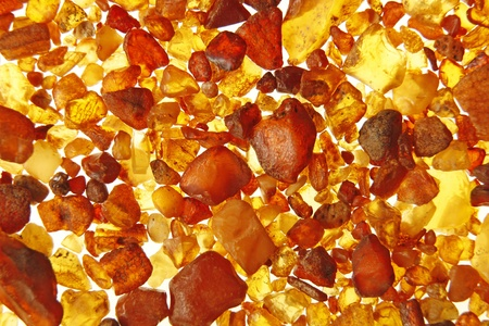 amber coloured: Amber stones from the beach of the Baltic Sea, Germany