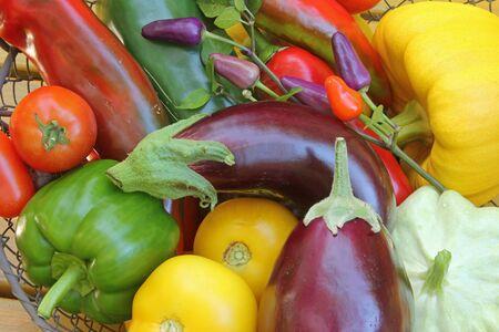 solanaceae: Freshly harvested Mediterranean vegetables
