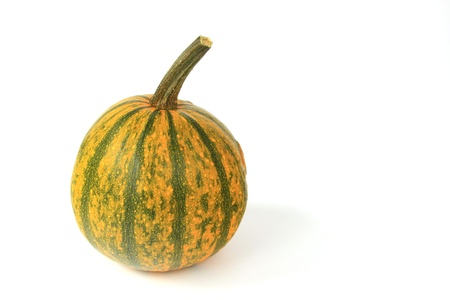 cucurbita: Ornamental squash, before a white background