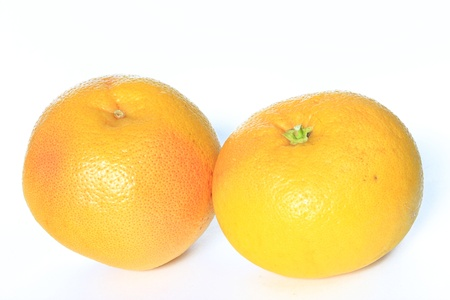Two Grapefruit fruits isolated on white background  Citrus x aurantium  Citrus paradisi  Stock Photo - 18850594