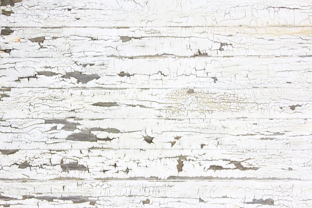 peeling paint: Wooden wall with white paint is severely weathered and peeling