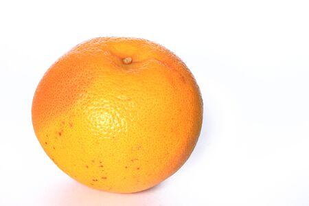 citrus family: Grapefruit isolated on white background  Citrus x aurantium  Citrus paradisi