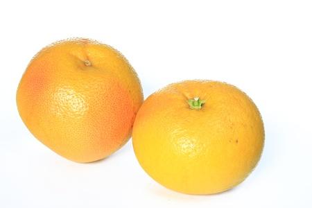 citrus family: Two Grapefruit fruits isolated on white background  Citrus x aurantium  Citrus paradisi  Stock Photo
