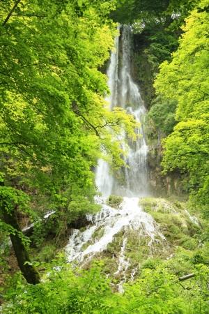swabian: The waterfall of Bad Urach, Swabian Alb, Baden-Wuerttemberg, Germany