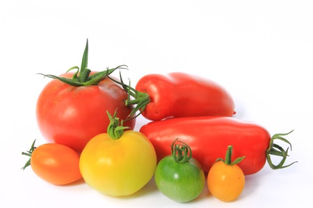 Various types of tomatoes in many colors  Solanum lycopersicum  Stock Photo