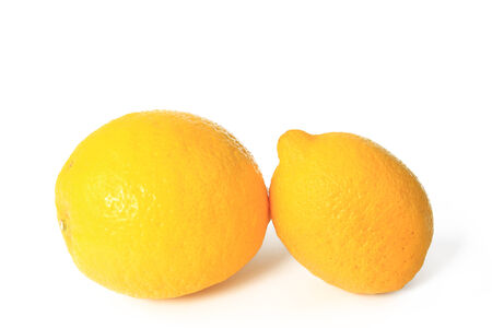 limon: Lemons  Citrus x limon  - ripe fruits isolated against white background