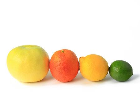 감귤류의 과일: Various citrus fruits: Grapefruit, orange, blood orange, lemon, lime,