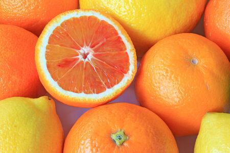 감귤류의 과일: Various citrus fruits: orange, blood orange, lemon with a halved blood orange
