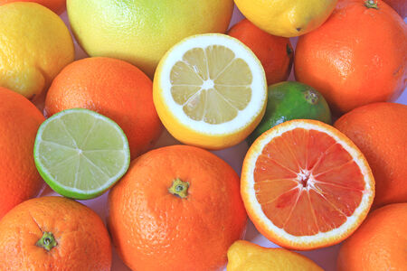 citrus maxima: Various citrus fruits: orange, blood orange, lemon, lime, grapefruit
