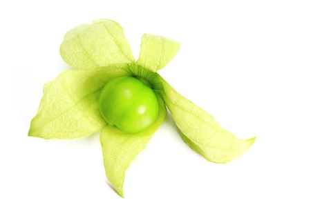 husk tomato: Tomatillo (Physalis philadelphica) - isolated in front of white background