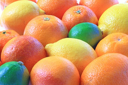 감귤류의 과일: Various citrus fruits: orange, blood orange, lemon, lime, 스톡 사진