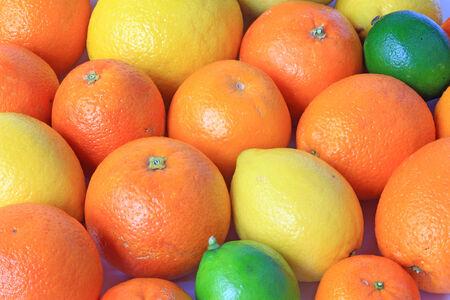 감귤류의 과일: 다양한 감귤류의 과일 : 오렌지, 혈액 오렌지, 레몬, 라임,