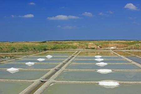sel: Production of sea salt (Fleur de sel) in the salt fields of Guerande, Brittany, France
