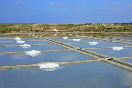 Production of sea salt (Fleur de sel) in the salt fields of Guerande, Brittany, France