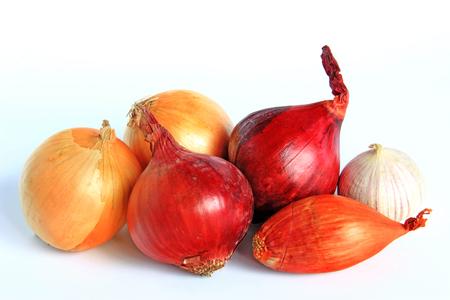 cebolla blanca: Varios tipos de cebollas: cebolla, cebolla roja, la cebolla y el ajo - aislados sobre fondo blanco