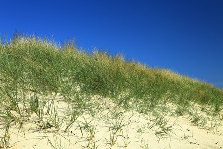 Dune at the Atlantic Ocean, beach of Kersiguenou, Crozon, Finistere, Brittany, France Stock Photo