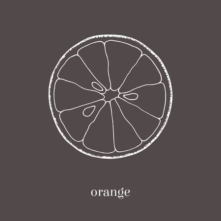sketched shapes: Orange slice hand drawn sketch. Isolated illustration. Vintage style. Stock Photo