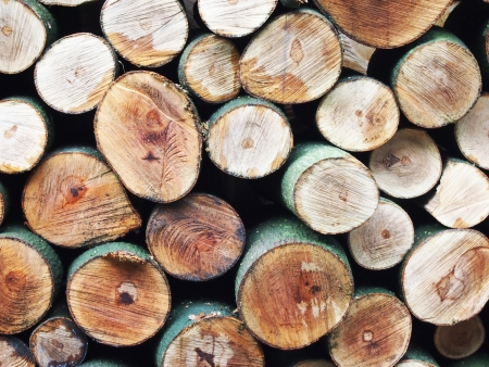 pyre: Timber background         Stock Photo