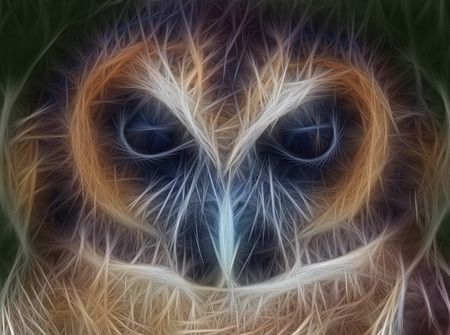 asian art: Fractal Art Picture of an Asian Brown Wood Owl