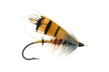 durham: Durham Ranger salmon fly shot against a white background