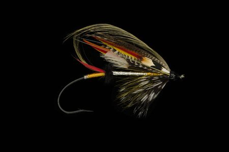 miller: Dusty Miller salmon fly shot against a black background
