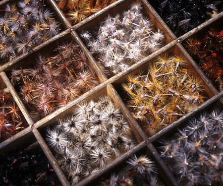 dun: Close up of a box of chalkstream trout flies