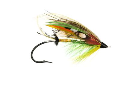 highlander: Tradicionalmente vestido Highlander Verde tiro mosca de salm�n sobre un fondo blanco