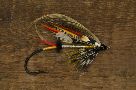 dusty: Traditionally dressed Dusty miller salmon fly shot against a wooden background