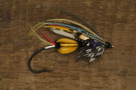 jock: Traditionally dressed Jock Scott  salmon fly shot against a wooden background