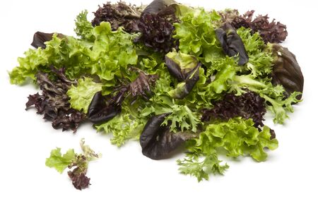 lettuces: Mixed salad leaves on a white background with natural shadow