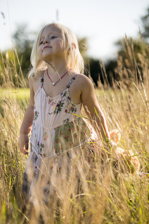 though: Girl walking though long grass holding teddy Stock Photo