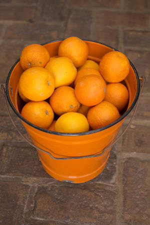 juicing: Juicing oranges in an orange metal bucket