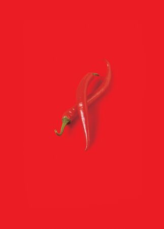 capsaicin: Pair of chili peppers on a red background