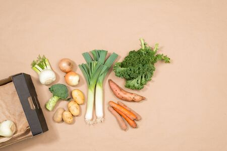 carboard box: A small assortment of fresh vegetables including leeks, kale, onions, potatoes, yam, fennel, broccoli, and carrots plus a carboard box with copy space. Stock Photo