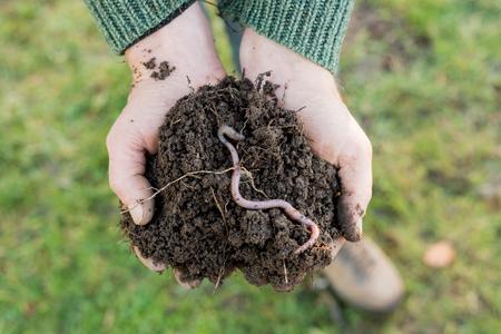An earthworm on a heap of soil on hands