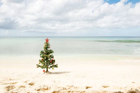 Decorated Christmas tree standing by the sea shore under cloudy skies Stockfoto