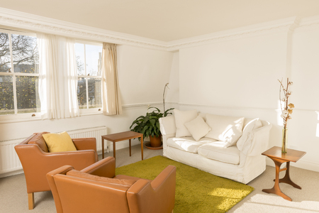Living room interior, enclosed in white walls and furnished with retro-styled leatherette armchairs, white couch, and green rug. Stock Photo - 94716074