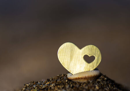 A beautiful bright heart shape is placed inside a shell on dark background.