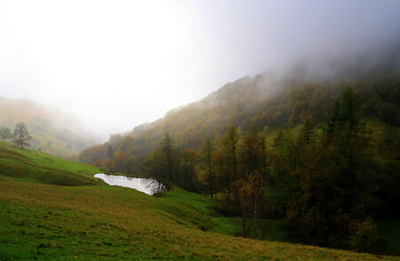 engulfed: A forest with yellow and green trees is engulfed in a cloudy mist. A small lake reflects the white sky.