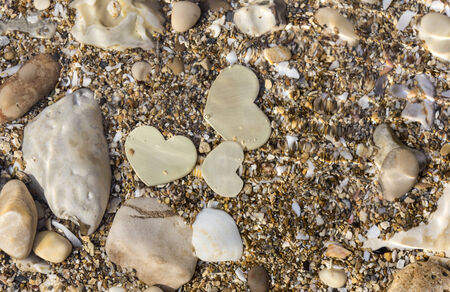 Three small metallic heart shapes are placed in shallow water with seashells and sand. The water ripples.