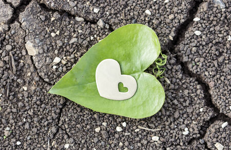 A metal  heart with a small heart inside it is placed on dry soil.