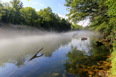 River covered with mist in early morning  with trees on the bank.