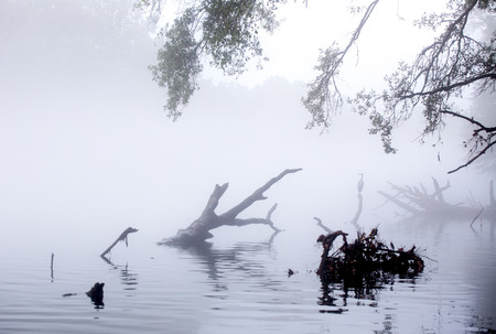 Early morning river covered with gray mist.
