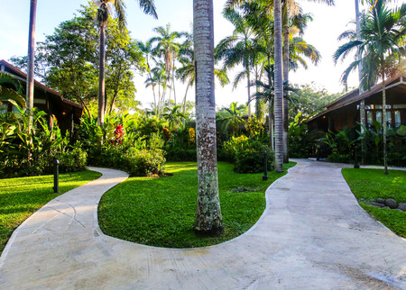 Beautiful tropical resort exterior with palm trees.