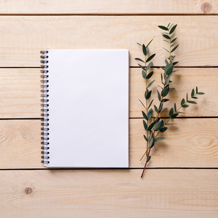 Blank notepad on a wooden surface. Empty notebook open on the table. Eucalyptus, gum tree. Top view. Stock Photo