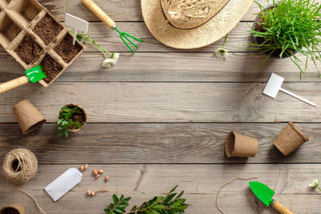 Gardening tools, straw hat and flowers in pots on wooden table. Spring in the garden concept, top view, flat lay composition.